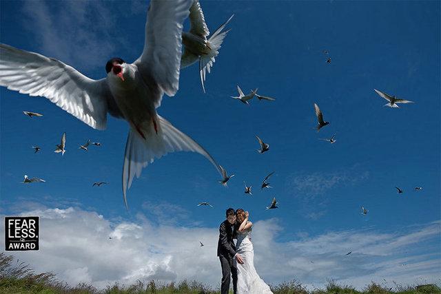 Kuşkusuz evliliğin yanında, düğünler de çiftlerin hayallerini süsleyen bir kutlama...