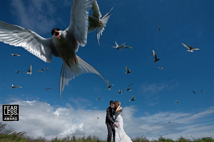 <p>Kuşkusuz evliliğin yanında, düğünler de çiftlerin hayallerini süsleyen bir kutlama...</p>