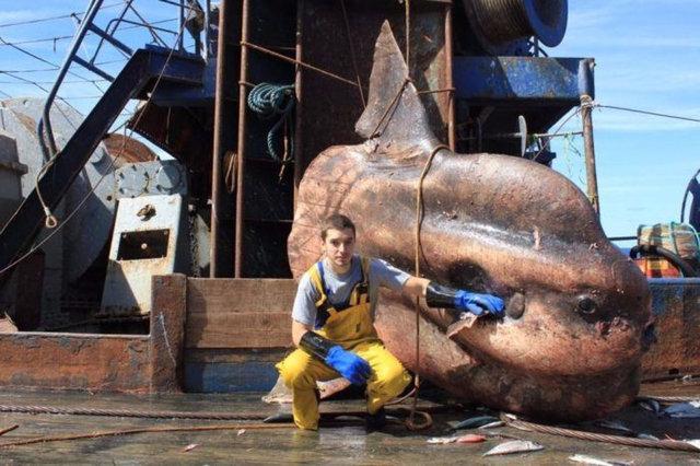 Murmansk'tan bir denizci, dünyayla ilginç fotoğraflar paylaşıyor.
