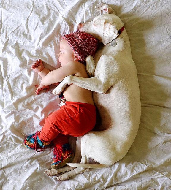 Kanada'nın Manitoba şehrinde yaşayan Elizabeth Spence, Instagram hesabı üzerinden köpeği ve oğlu arasındaki ilişkiyi aktarıyor.