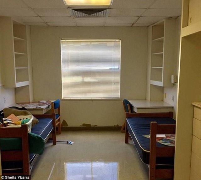 Kylar Bantz ve Adeline Vela adındaki öğrenciler odalarını tasarlamak için 10 saat harcadılar.