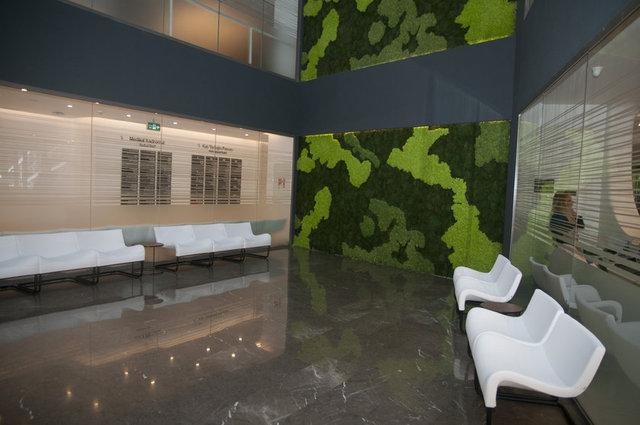 Hastanenin giriş katında bulunan özel alanın duvarında, nemle büyüyen özel bir bitki yer alıyor.