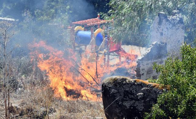 Muğla'nın Bodrum ilçesinde makilik ve otluk alanda yangın meydana geldi.