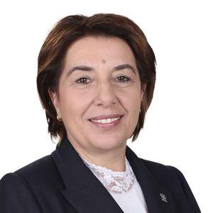 Ayşe Nur Bahçekapılı