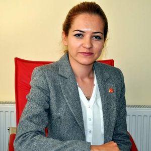 Fulya Gülşen Altınsoy
