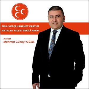 Mehmet Cüneyt GÜZEL