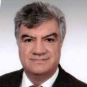 Ali Engin