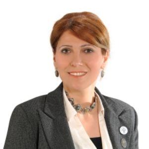 Ayfer Demirel