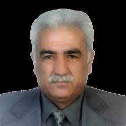 Ahmet Meriç