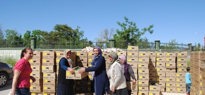 KARAMAN'DA SEBZE KURUTMA PROJESİ KAPSAMINDA 160 BİN FİDE DAĞITILDI