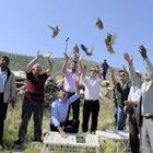 Uşak'ta bin 500 kınalı keklik doğaya salındı