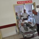 Eşeğin saldırısına uğrayan vatandaş tedavi altına alındı