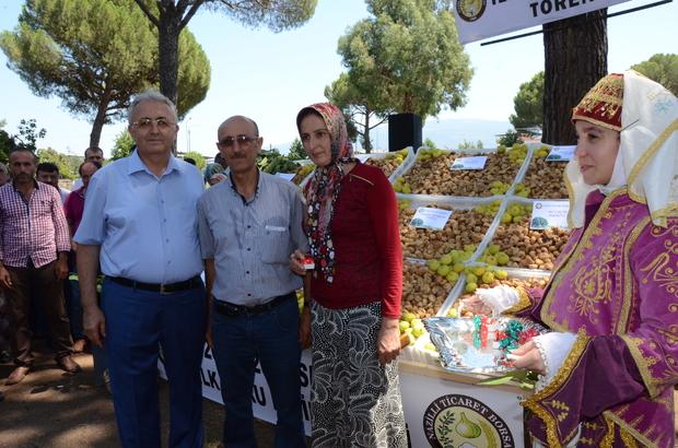 Nazilli'de kuru incirin kilosu 125 liradan satıldı