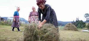 Doğu Karadenizli kadın besicileri kış telaşı sardı