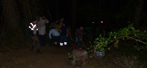 Kastamonu'da üzerine ağaç devrilen genç öldü