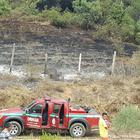 Sakarya'da eski köy muhtarı yanarak ölmüş halde bulundu
