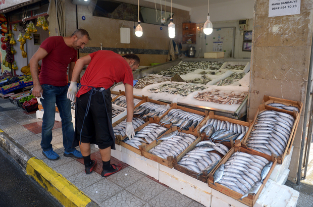 Karadeniz'de bir gecede 7 bin kasa palamut avlandı