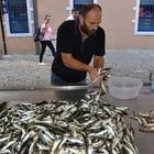 Balıkçı tezgahlarında bayram durgunluğu