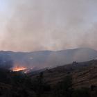 Sivas'ta orman yangını