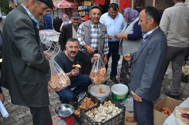 Köylünün ek gelir kaynağı Kanlıca mantarı pazara indi