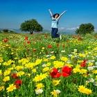 """""""4 Mevsim Altınova Fotoğraf Yarışması"""""""