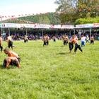 32. Söğütlü Kültür, Sanat, Spor, Tarım, Hayvancılık ve Süt Festivali