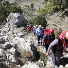 Mersin'de uçurumda mahsur kalan 12 keçi kurtarıldı