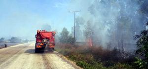 Osmaniye'de orman yangınları