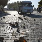 Traktörden dökülen şeker pancarı yola saçıldı