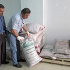 Kavak'ta çiftçilere sertifikalı buğday tohumu veriliyor