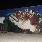 """Koruma altındaki """"orfoz"""" balığı liman mendireğine resmedildi"""