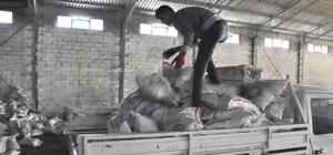 Merzifon SYDV'den kömür yardımı