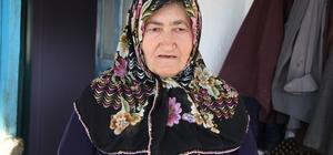 Afyonkarahisar'da kuduz karantinası