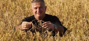 Tahıl Üreticileri Birliği Başkanı Toker:
