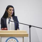 Türkiye'ye başkanlık sistemini anlatacaklar