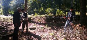 Erbaa'da orman gençleştirme çalışmaları