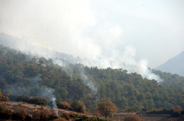 Tokat'taki orman yangını