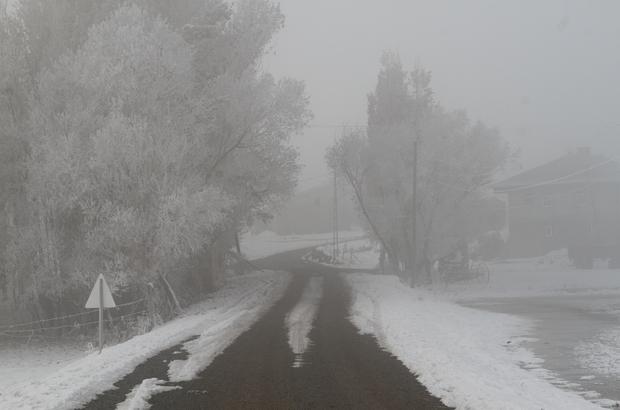 Ağrı'da yoğun sis