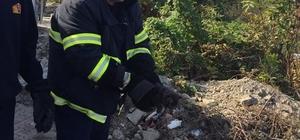 Türkeli'de minibüsün motoruna sıkışan kedi kurtarıldı