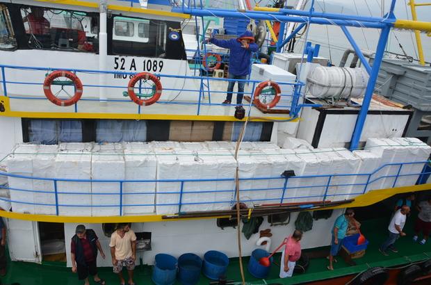 Doğu Karadenizli balıkçılar hamsiden umduğunu bulamadı