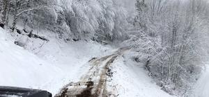 Sakarya'da kar yağışı
