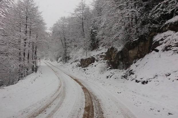 Doğu Karadeniz'de kar yağışı