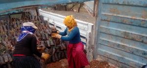 Sason'da fıstık fidanı dağıtımı
