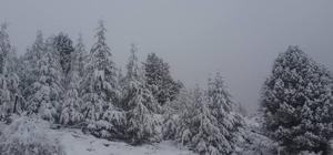 Anamur'un yaylalarına mevsimin ilk karı yağdı