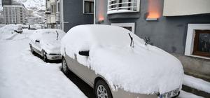 -Gümüşhane'de kar yağışı