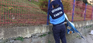 Trabzon'da zabıta denetimleri sürüyor