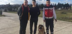 Hava ambulans servisinin kaybolan bekçi köpeği bulundu