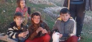 Çarkaca'da öğrenciler fıstıkçamı dikti