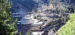 Erdemli İçme yaylasının şifalı suyu sağlık turizmine açılacak