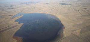 44 bin 938 kuş gözlenen Kars Kuyucuk Gölü kendi rekorunu kırdı